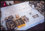 Madaba-Finds Distrib-Coins-Misc