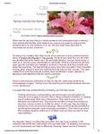 2015 April Newsletter by Nancy Rockey