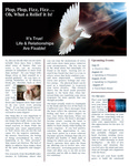 2013 August Newsletter by Nancy Rockey