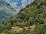 Bobbio Pellice Landscape